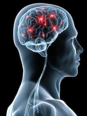 kognitivní schopnosti